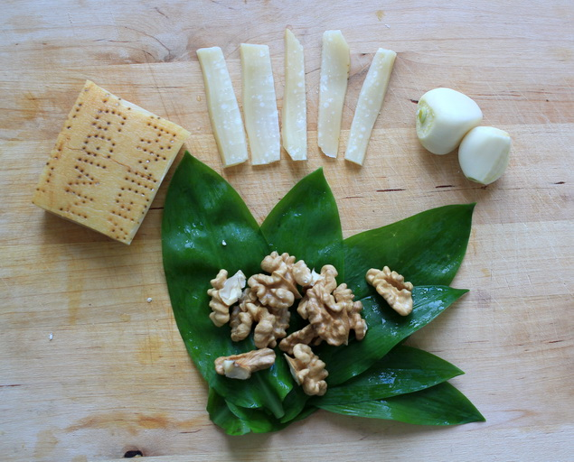 medvedi cesnak recept pesto