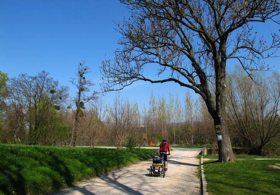 cyklotrasa bratislava hainburg