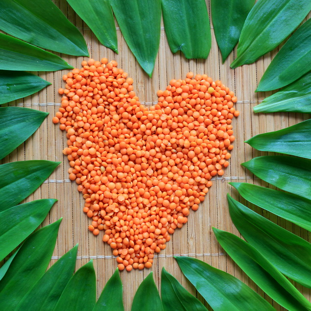 natierka madvedi cesnak
