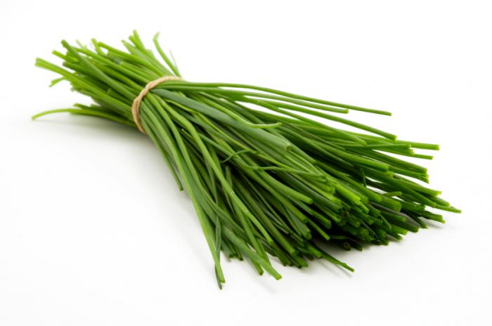 bunch-of-chives