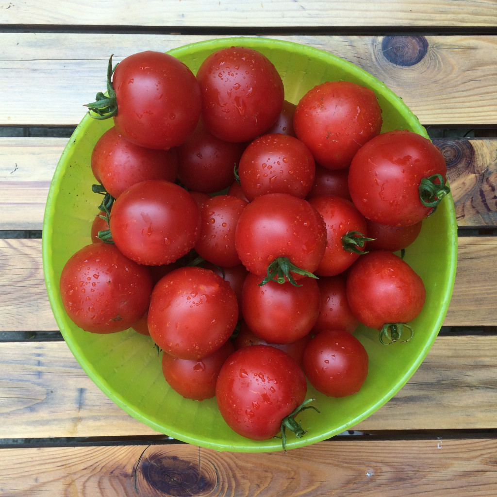 paradajkova polievka recept varecha